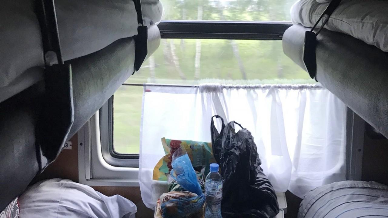 В Госдуме РФ предложили создать вагоны для «одиноких людей»