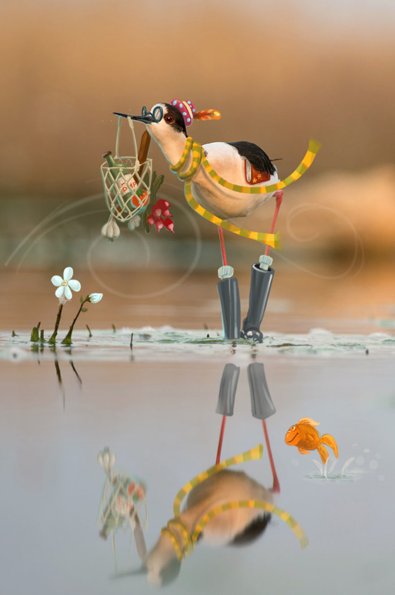 Проект фотографа и иллюстратора, рассказывающий истории диких животных животные, иллюстратор, креатив, личность, проект, студия, фотограф
