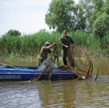 рыболовный вентерь для ловли рыбы в море