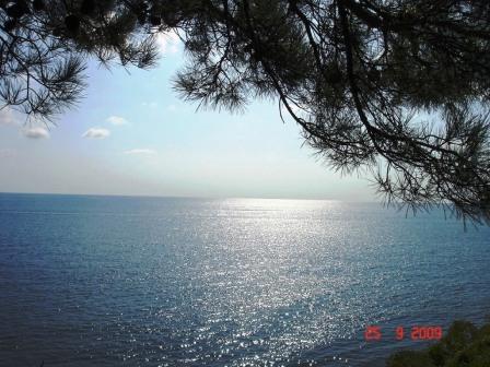 Черное море. Отдых без переплат
