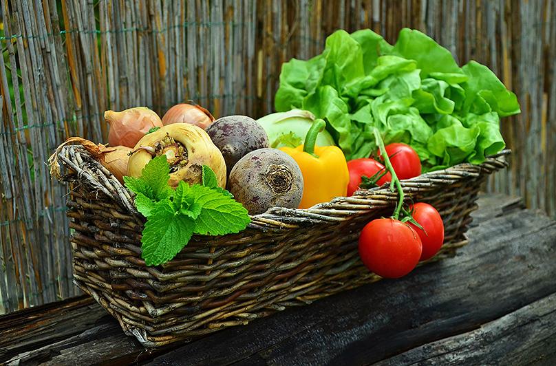 Праздник урожая Результаты летних трудов, которые осенью радуют своих хозяев.