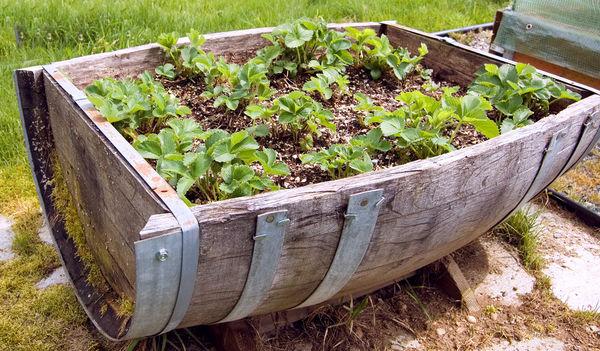 Идеи для контейнерных садов и огородов на небольшом участке