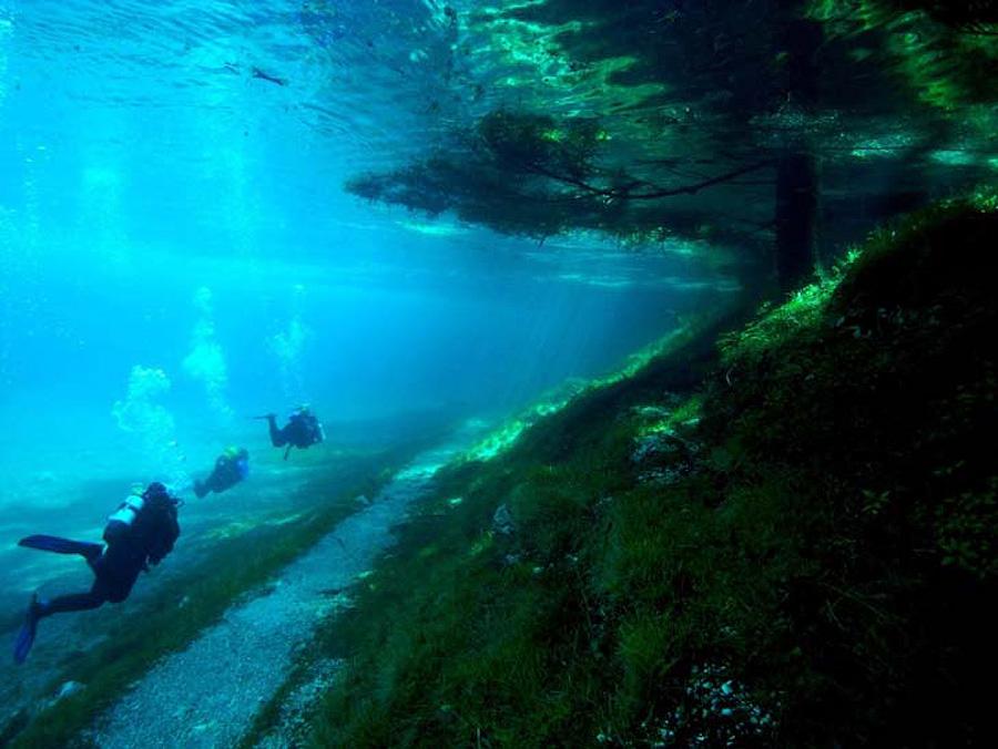 3ZNLCK1 Призрачный парк Зеленого озера