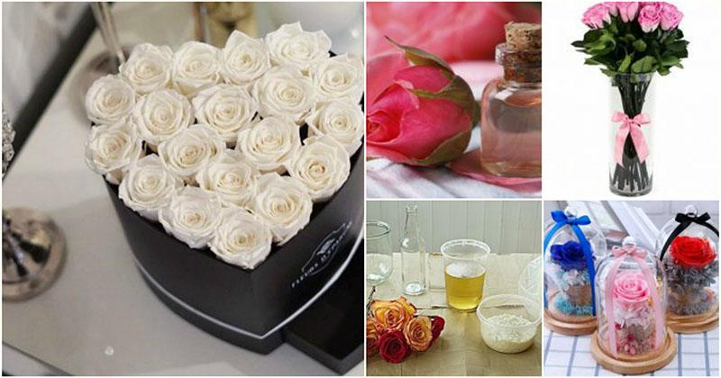 Сохраните первозданную красоту цветов с помощью 3 действенных методов