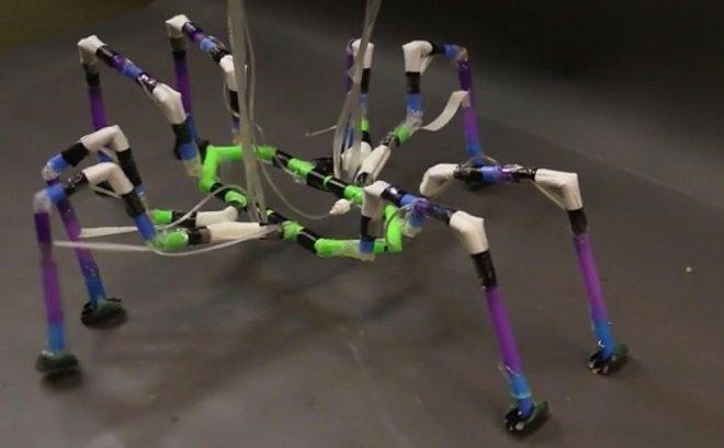 В Гарварде увлеклись созданием роботов из коктейльных трубочек