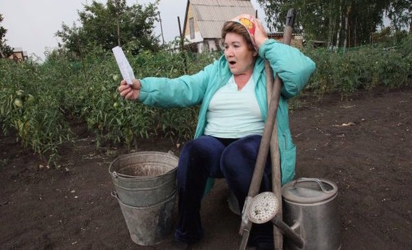 Началось! Туалет, картошка и т.д. Полный список штрафов для садоводов .