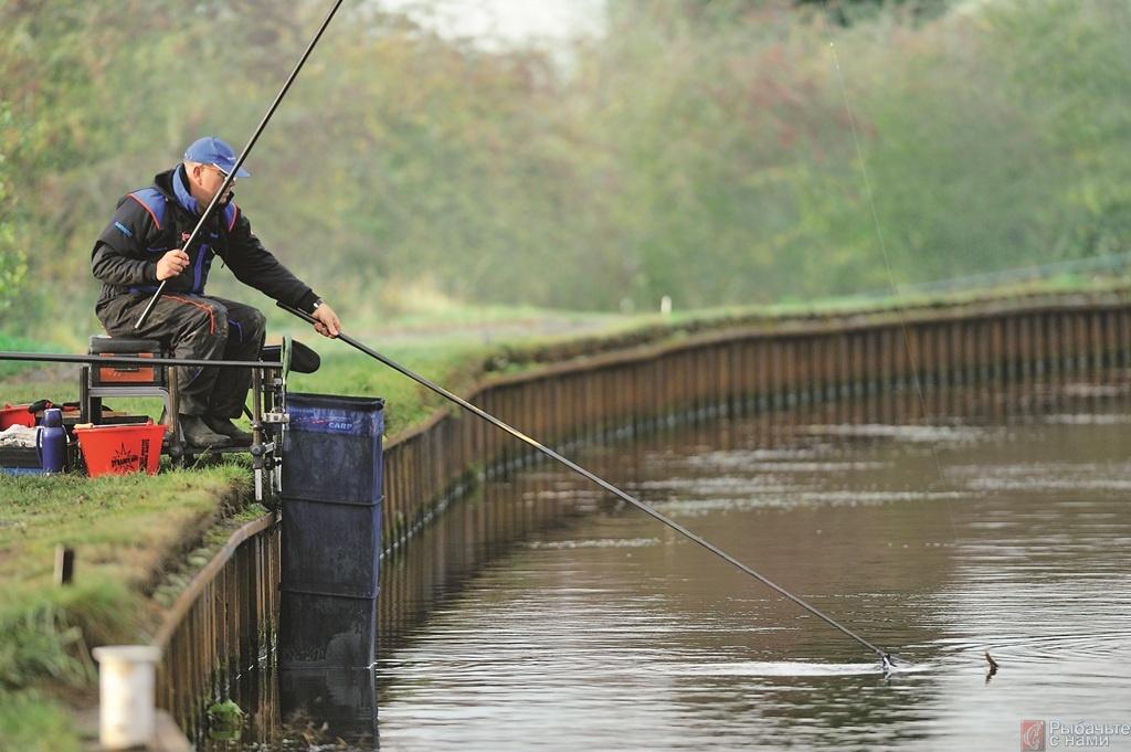 Ловля канальной плотвы