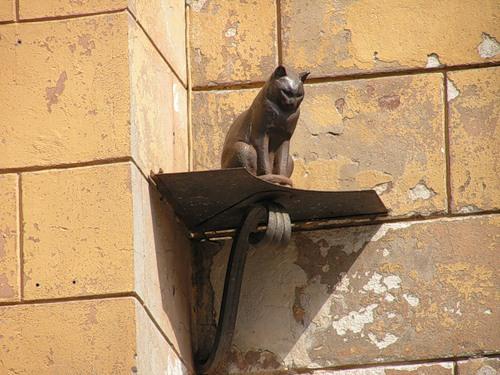 Кот, переживший блокаду Ленинграда Ленинграда, кот, переживший блокаду