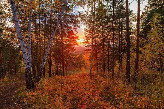 Осенний вечер... Иосиф  Бродский
