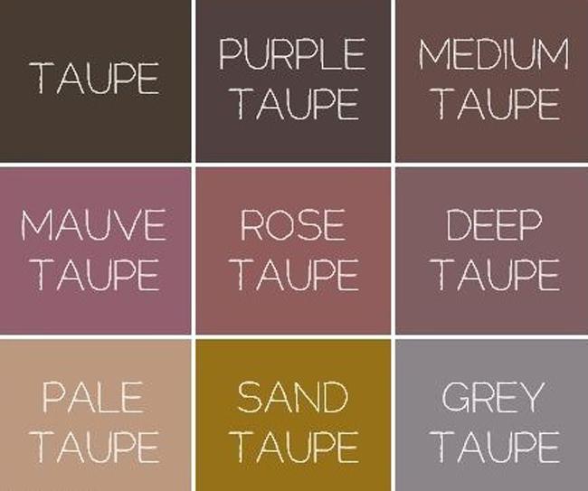 Как выглядеть дорого: цвет, …