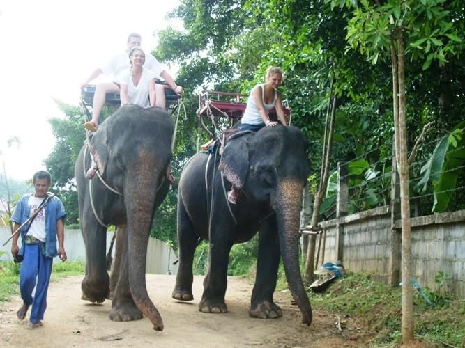 Слоновья деревня. Таких деревень по пути на Квай несколько. Совершенно не принципиально – какую из них Вы посетите. Только уточните при покупке экскурсии, чтобы катание на слонах входило в общую стоимость. kwai, thailand, паттайя, река квай, тайланд