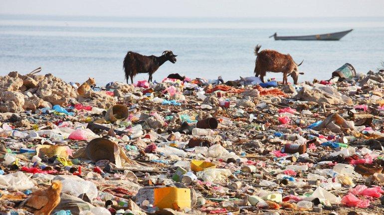 Самые грязные пляжимира