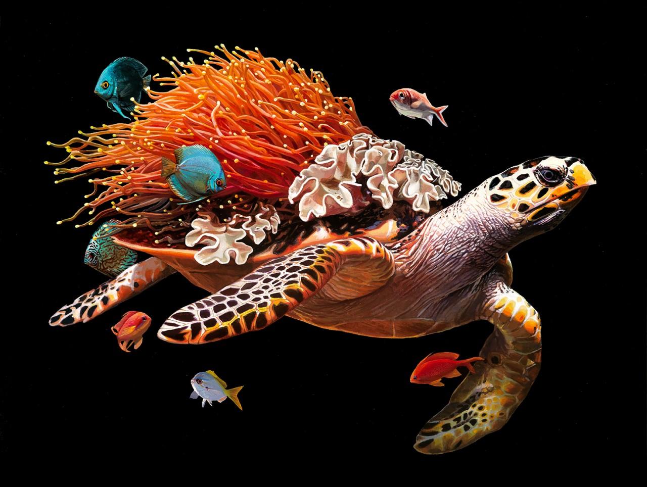 Мир, который держит черепаха на своей спине