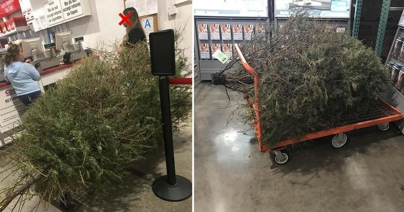Американка попыталась вернуть елку в магазин после праздников
