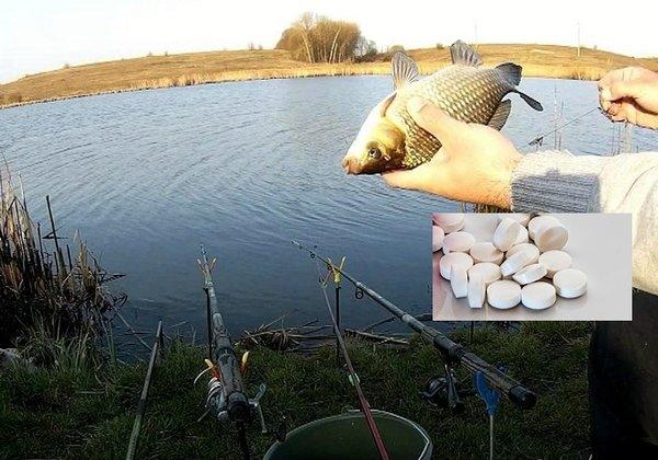 Невероятный способ привлечь рыбу к условному месту ловли — всё дело в таблетках