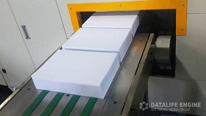В Башкирии против чиновницы возбудили уголовное дело за взятку бумагой А4