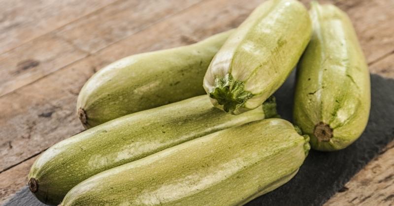 польза и вред кабачкового сока
