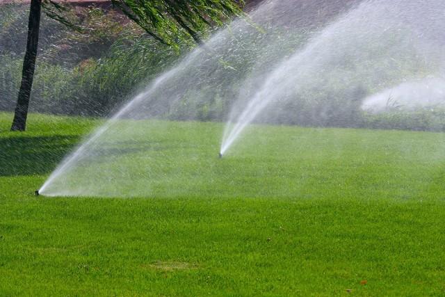 Способы полива — их преимущества и недостатки