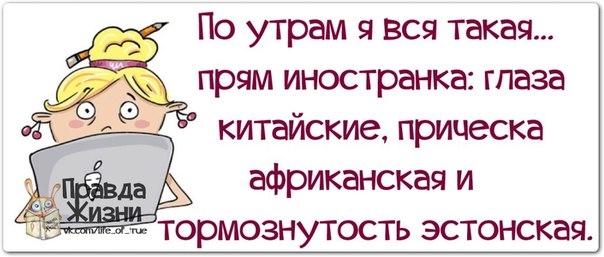 Зая... такая зая)