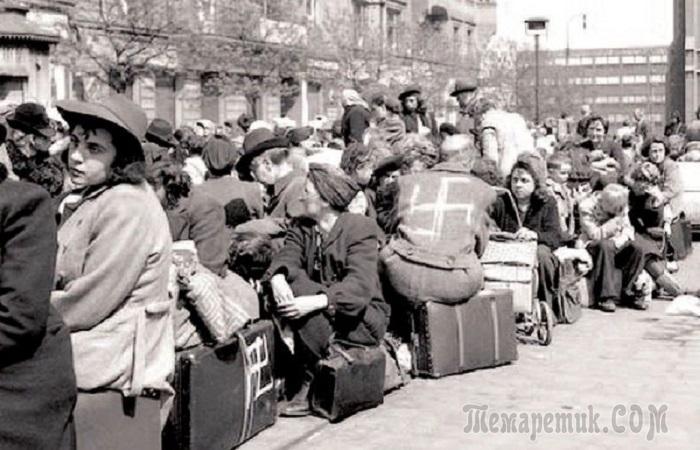 Что происходило с немцами в разных странах после Второй мировой