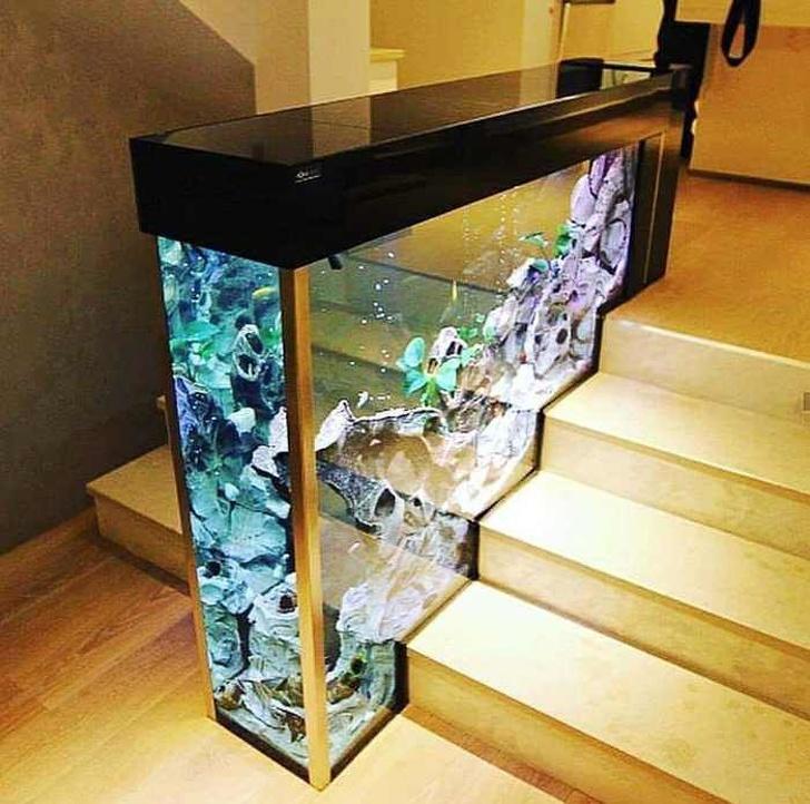 Встроенный в лестницу аквариум
