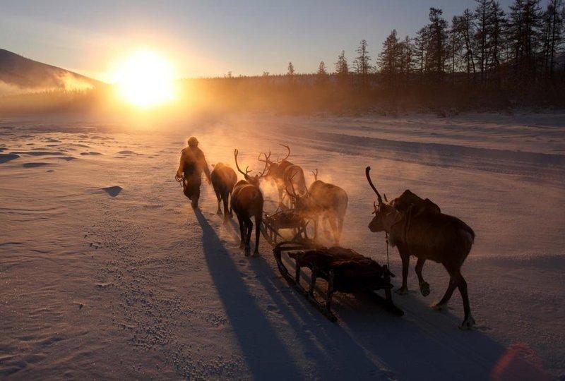 Шепот звезд... Оймякон, зима, интересное, полюс холода, якутия