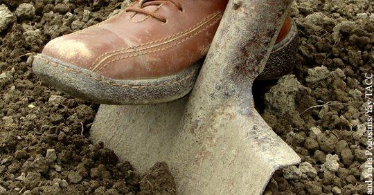 Как с помощью лопаты радикал…