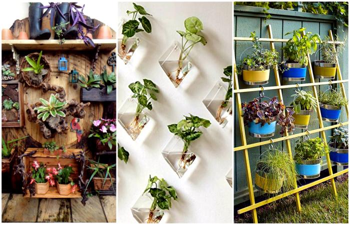 19 великолепных вертикальных садов, которые каждый может создать на даче или в квартире при минимуме места