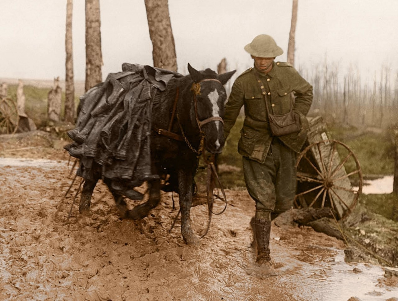 Транспортировка солдатских сапог на лошади архивное фото, колоризация, колоризация фотографий, колоризированные снимки, первая мировая, первая мировая война, фото войны