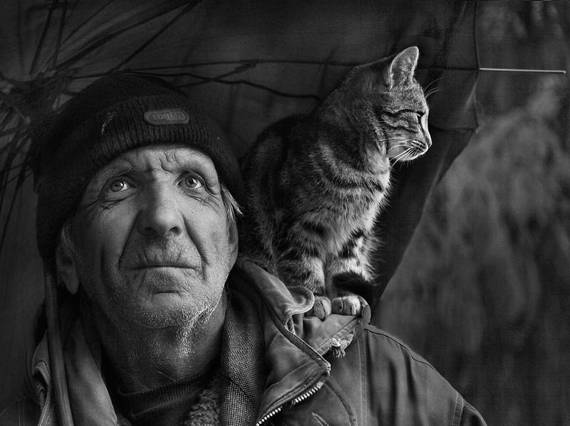 Александр Соколов. Два одиночества