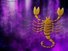 скорпион/4348076_024 (133x100, 5Kb)