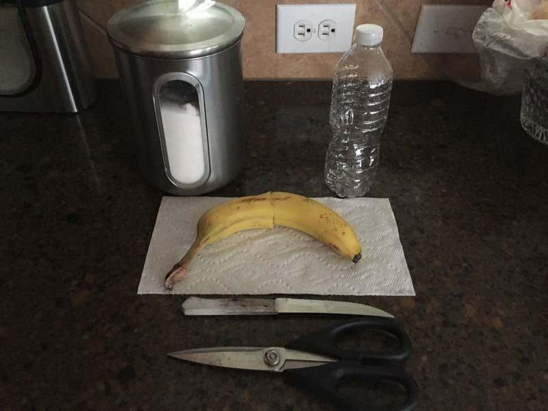 Создаём ловушку для мух из пластиковой бутылки