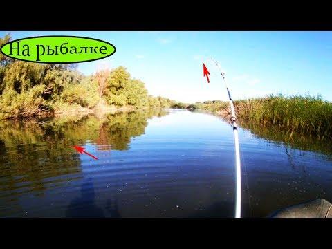 Рыбалка на фидер и поплавочную удочку  хороший улов и наглый Рак 2017   Рыбалка на видео