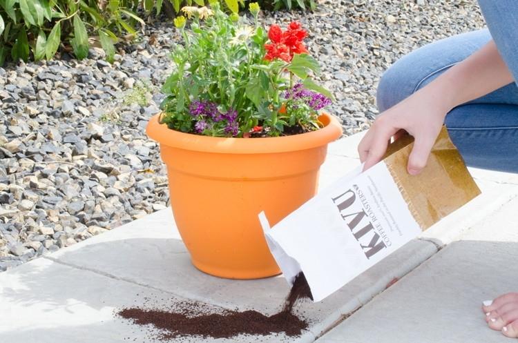 Огородите растения в тех местах, где много вредителей