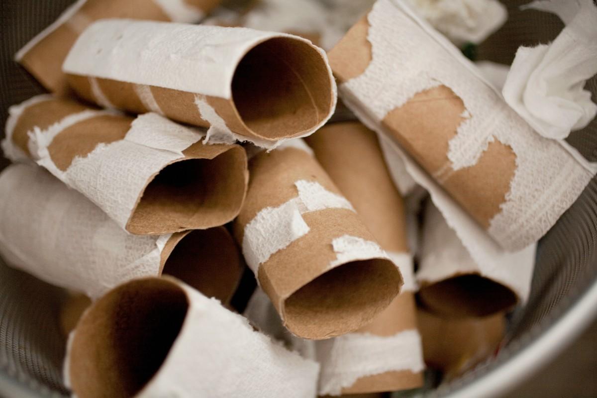 Как использовать втулку от туалетной бумаги для сада?