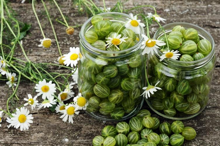 Варенье из зелёных недозрелых фруктов? Необычно!
