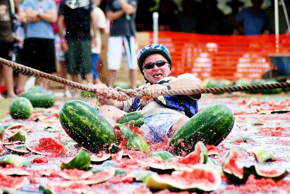 Фестиваль для любителей арбузов Chinchilla Melon