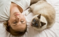 Rene Jansa, Shutterstock.com