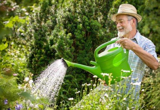 Выбираем вибрационный насос для полива сада