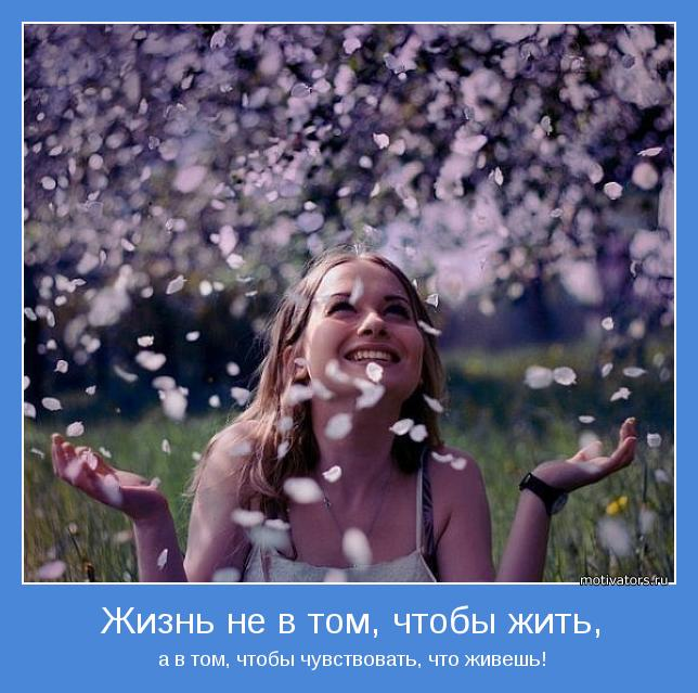 Подборка радостных и веселых…