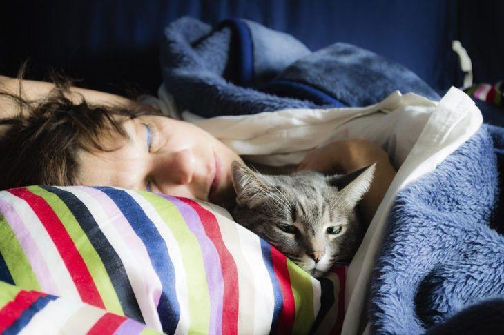 Если кошка любит спать в вашей постели - вот что это значит