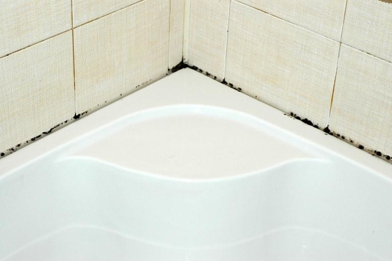 Плесени нет места в ванной! Эффективное средство по борьбе с плесенью