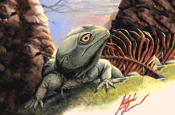 Палеонтологи нашли новую рептилию триасового периода