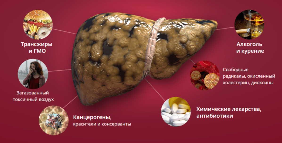 Как разгрузить печень? Вы можете болеть и не знать причины!