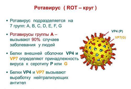 Ротавирус - что это
