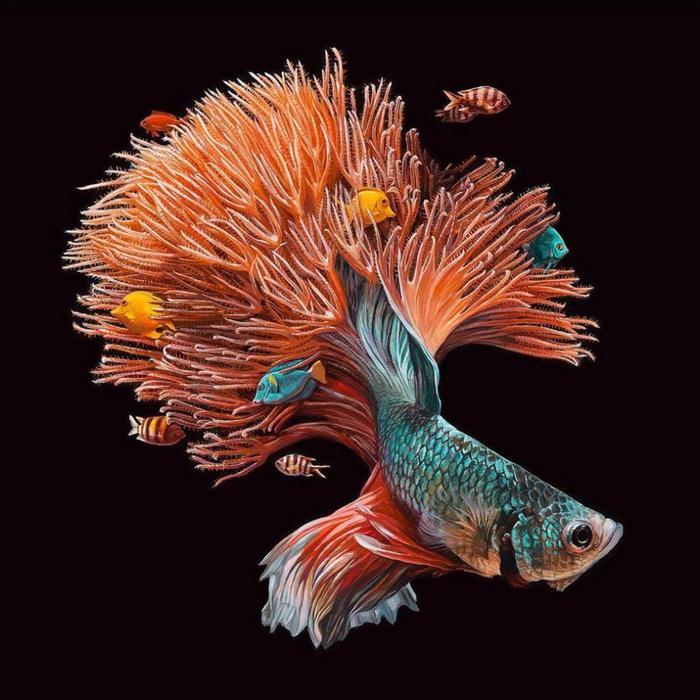 Невероятный мир волшебных рыб. Автор: Lisa Ericson.