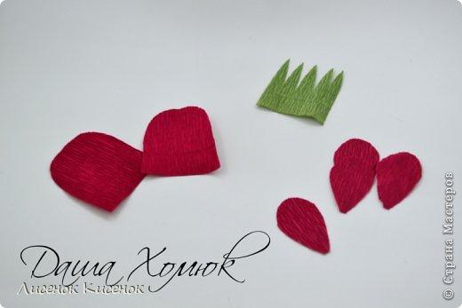 Свит-дизайн. Розы из гофрированной бумаги (12) (520x347, 67Kb)