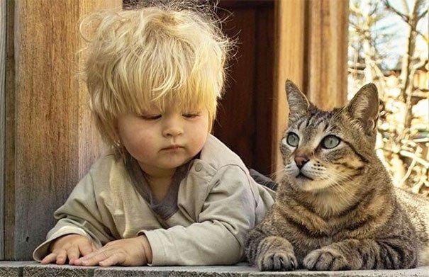 дети ведут себя как животные