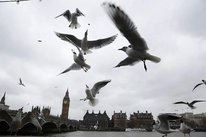МВД Великобритании предупредил о сохраняющейся угрозе терактов в стране