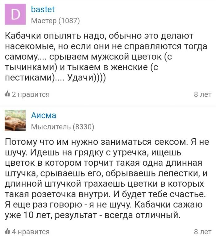 """Тыкаем пестиками: """"Мудрые"""" с…"""